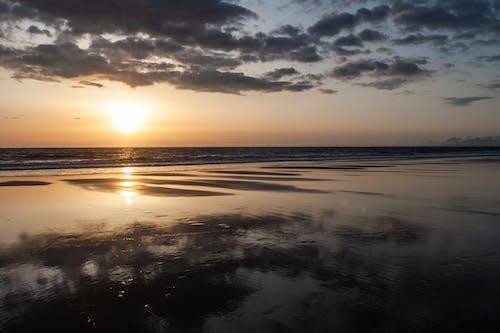 Gratis stockfoto met h2o, natuur, strand, water