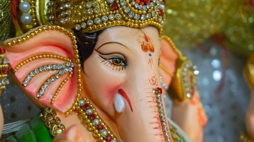 Free stock photo of festival of india, ganesh, ganesha