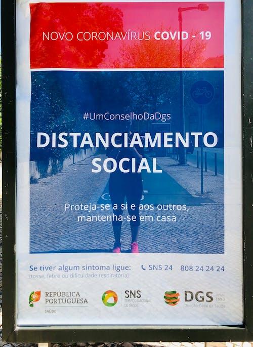 Foto stok gratis covid-19, hidup, isolasi, Lisbon