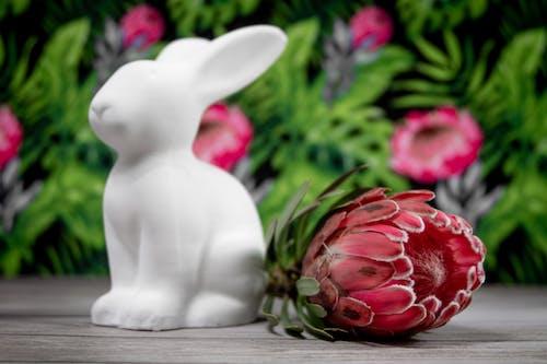White Ceramic Rabbit Figurine Beside Red Flowers