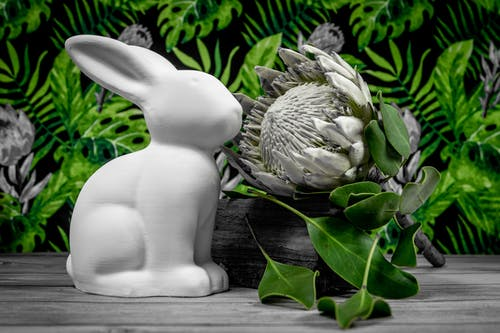 White Ceramic Rabbit Figurine on Brown Wooden Table