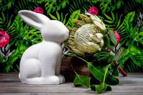 White Ceramic Rabbit Figurine on Brown Wooden Table