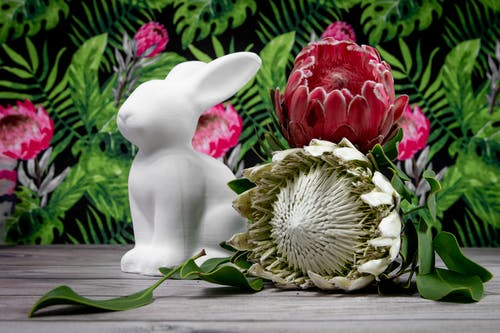 White Ceramic Rabbit Figurine Beside Red and White Flower