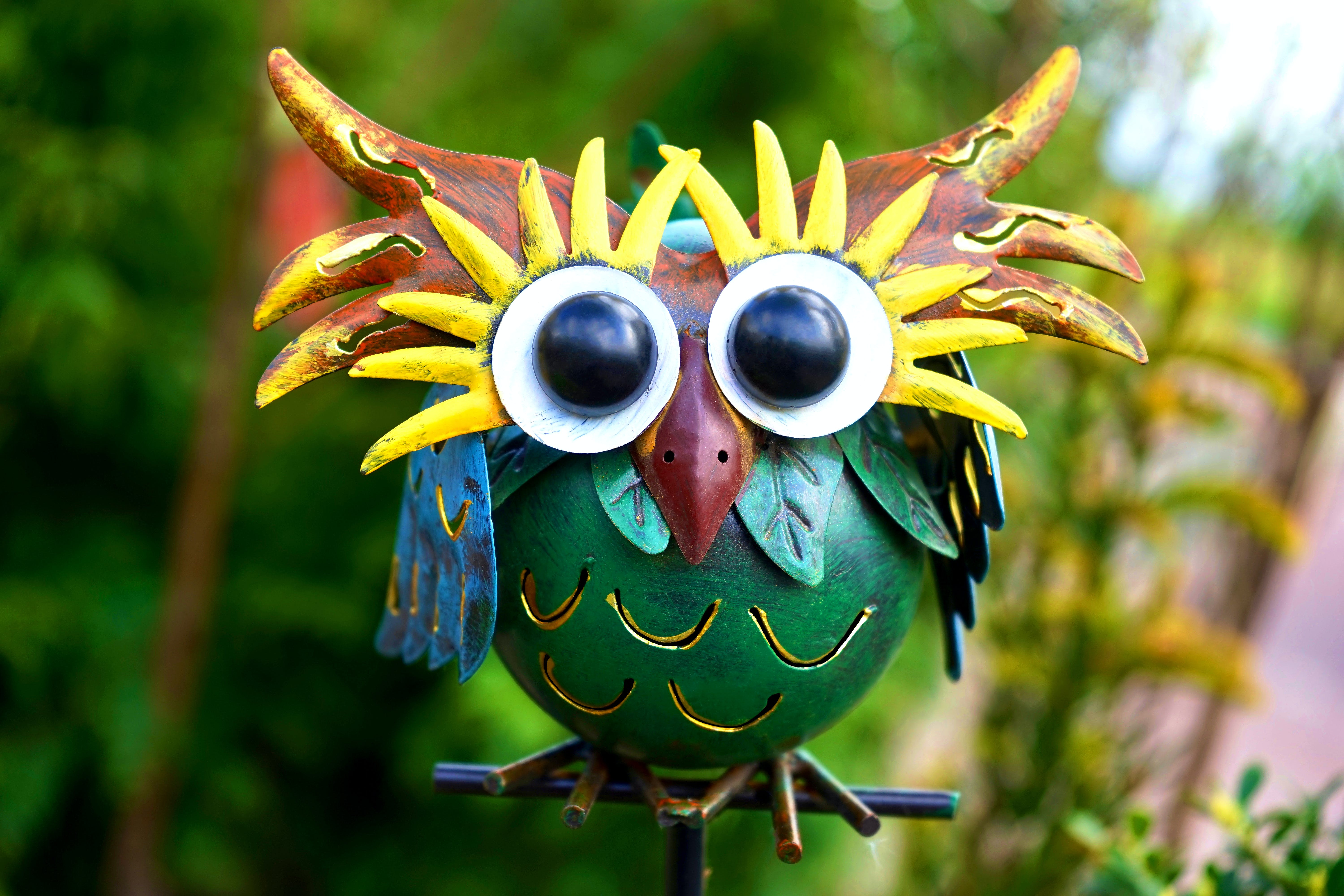 Green and Brown Owl Decor