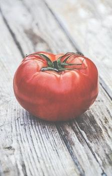 Free stock photo of food, single, tomato, vegetable