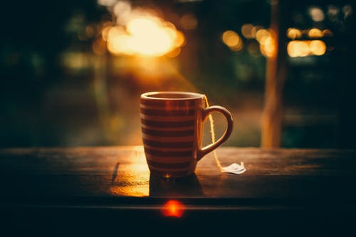 Cup of tea against tropical forest during sunset