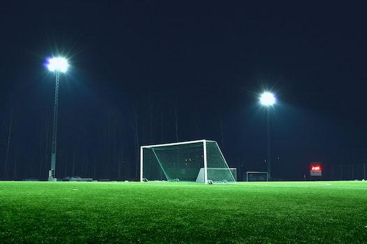 Free stock photo of light, lights, night, field