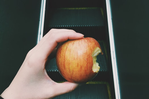 Free stock photo of food, hand, apple, breakfast