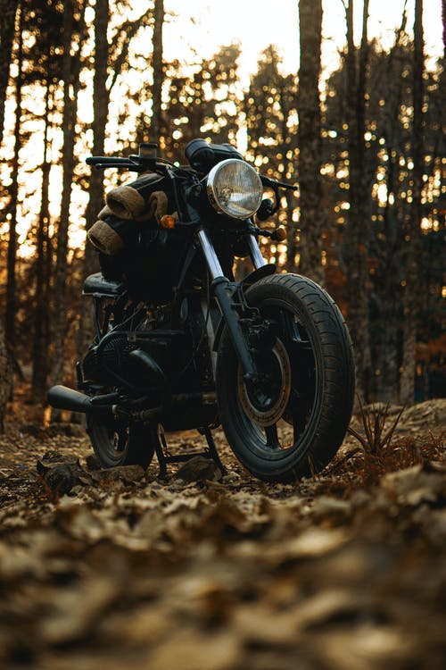 Black Motorcycle on Brown Dried Leaves
