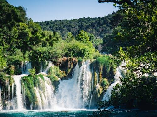 Foto d'estoc gratuïta de a l'aire lliure, aigua, aigua del riu, arbre