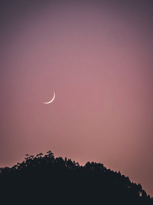 Kostnadsfri bild av enkel, enkelhet, halv måne, kvällshimmel