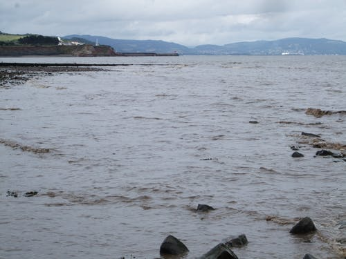 Free stock photo of beach, early morning, seaside