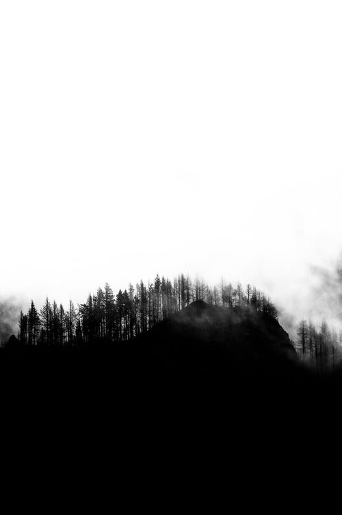 Black and white of light fog above mountain forest growing on small hill out of city