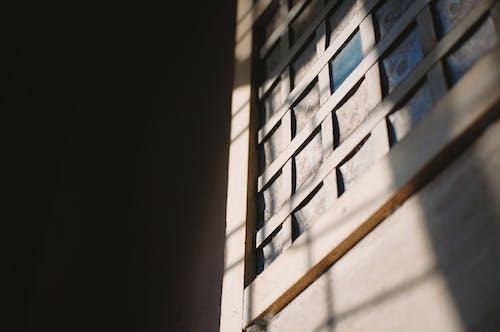 Foto d'estoc gratuïta de casa, clareja, estampat