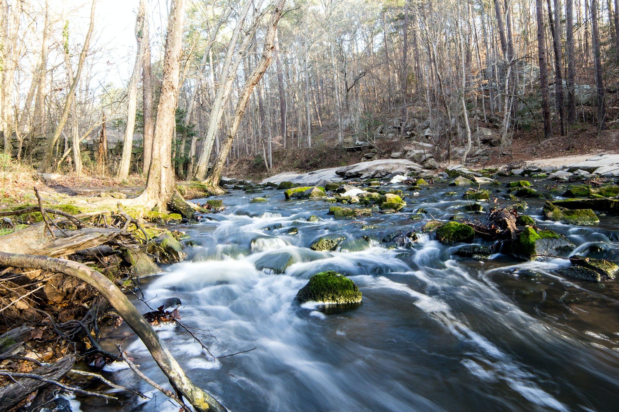 Základová fotografie zdarma na téma příroda, proud, stezka