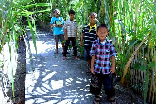 Foto profissional grátis de crianças, crianças asiáticas, filhos, ici
