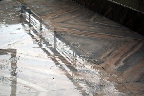 Darmowe zdjęcie z galerii z krople deszczu, natura, rozbryzg wody, rozpryskiwanie