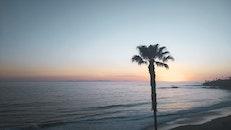 sunset, beach, ocean