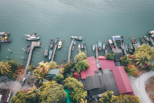 Aerial View of Boats and Houses Near Body of Water