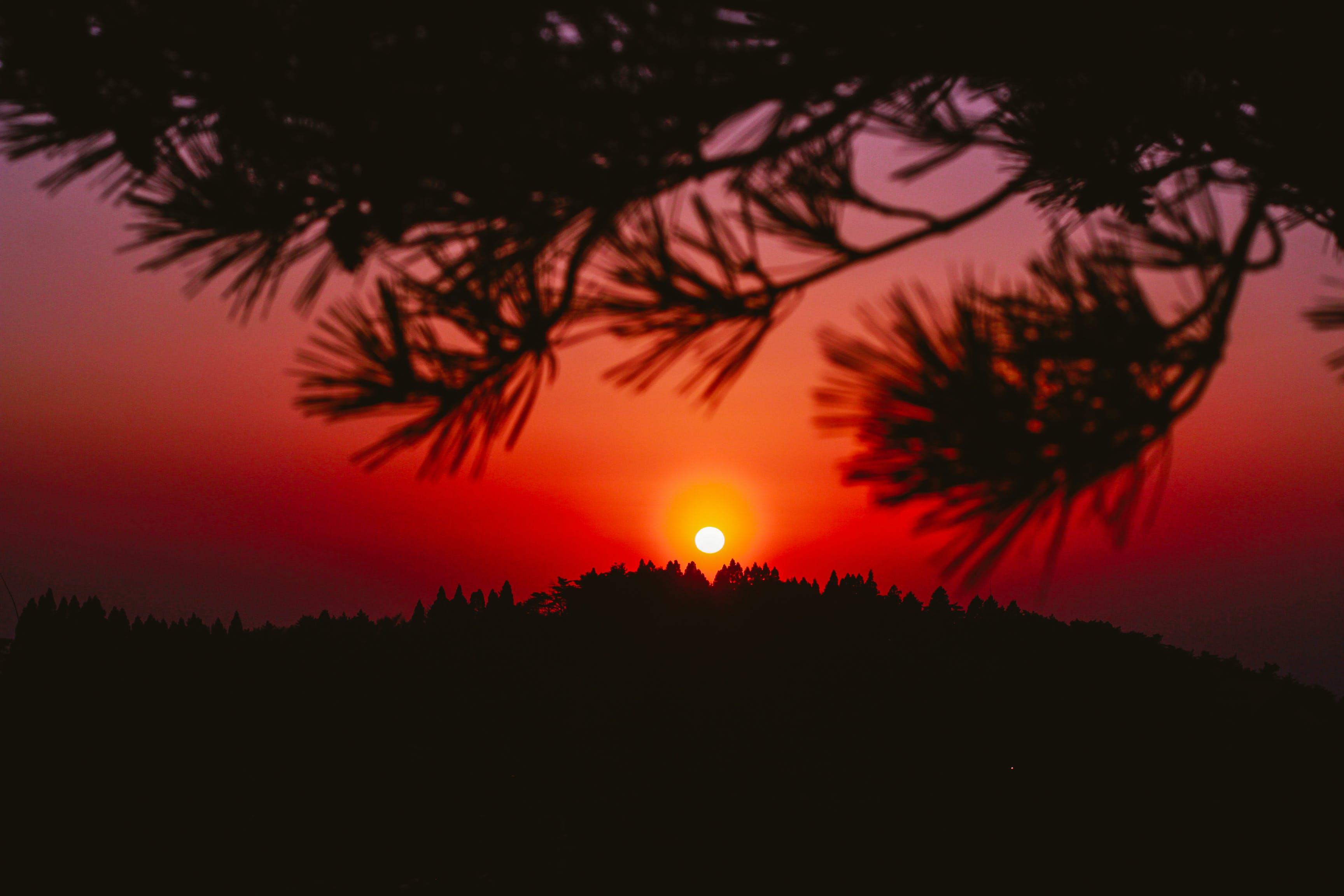 Free stock photo of nature, sky, sunset, dark