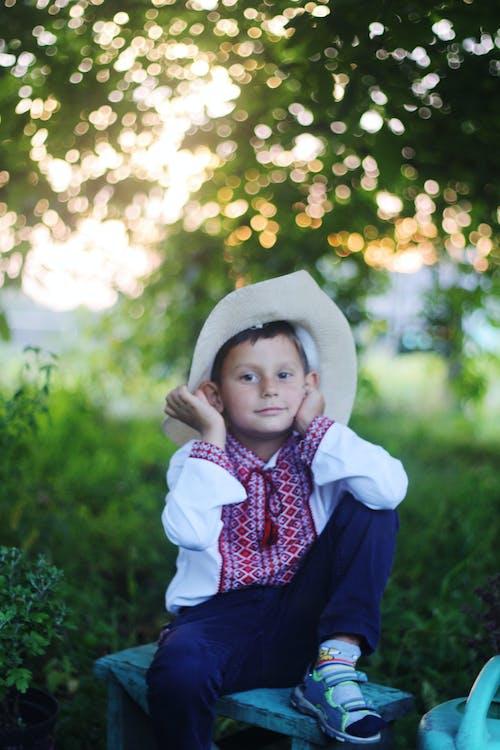 Fotos de stock gratuitas de adorable, al aire libre, bokeh