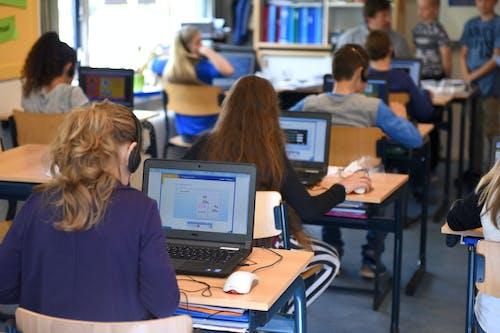 坐, 學校, 學習, 房間 的 免費圖庫相片