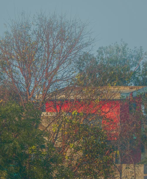 Free stock photo of Dramatic house, foggy, Horrific House, Man Slaughter House