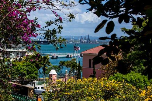 Gratis arkivbilde med san juan puerto rico