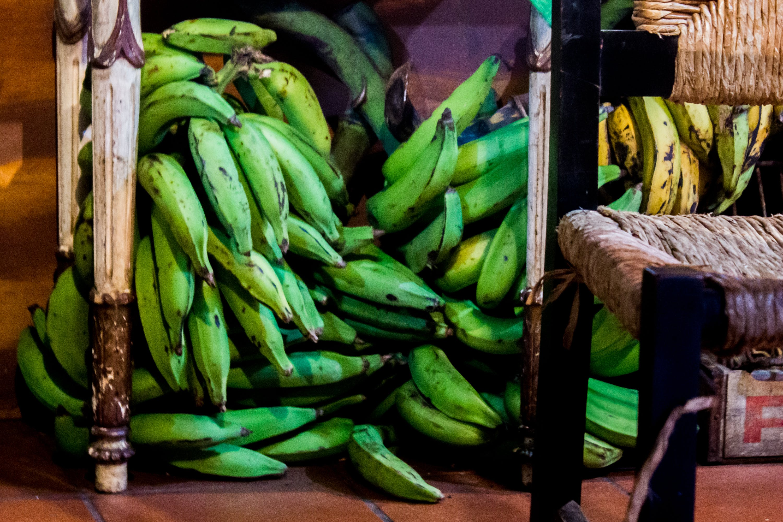 Free stock photo of plantains, San Juan Puerto Rico