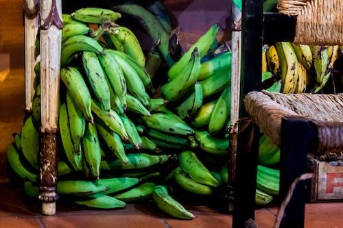 Gratis arkivbilde med plantains, san juan puerto rico