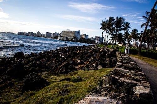 Gratis arkivbilde med bryte vann, hav, san juan puerto rico