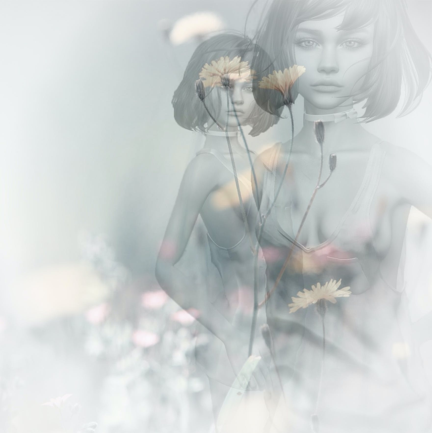 Free stock photo of flowers, girl, abstract