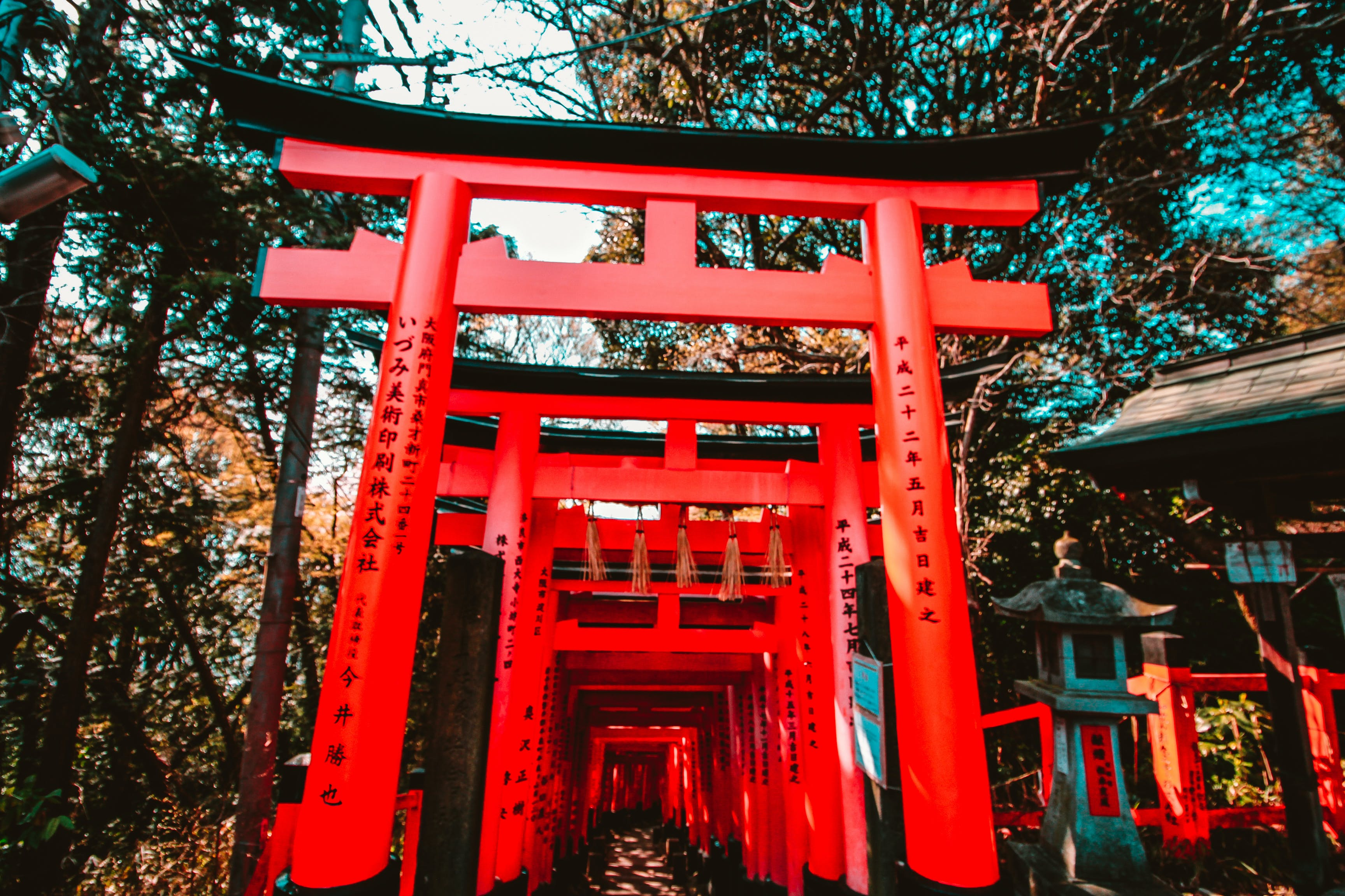 Free stock photo of japan, japanese culture, red, temple