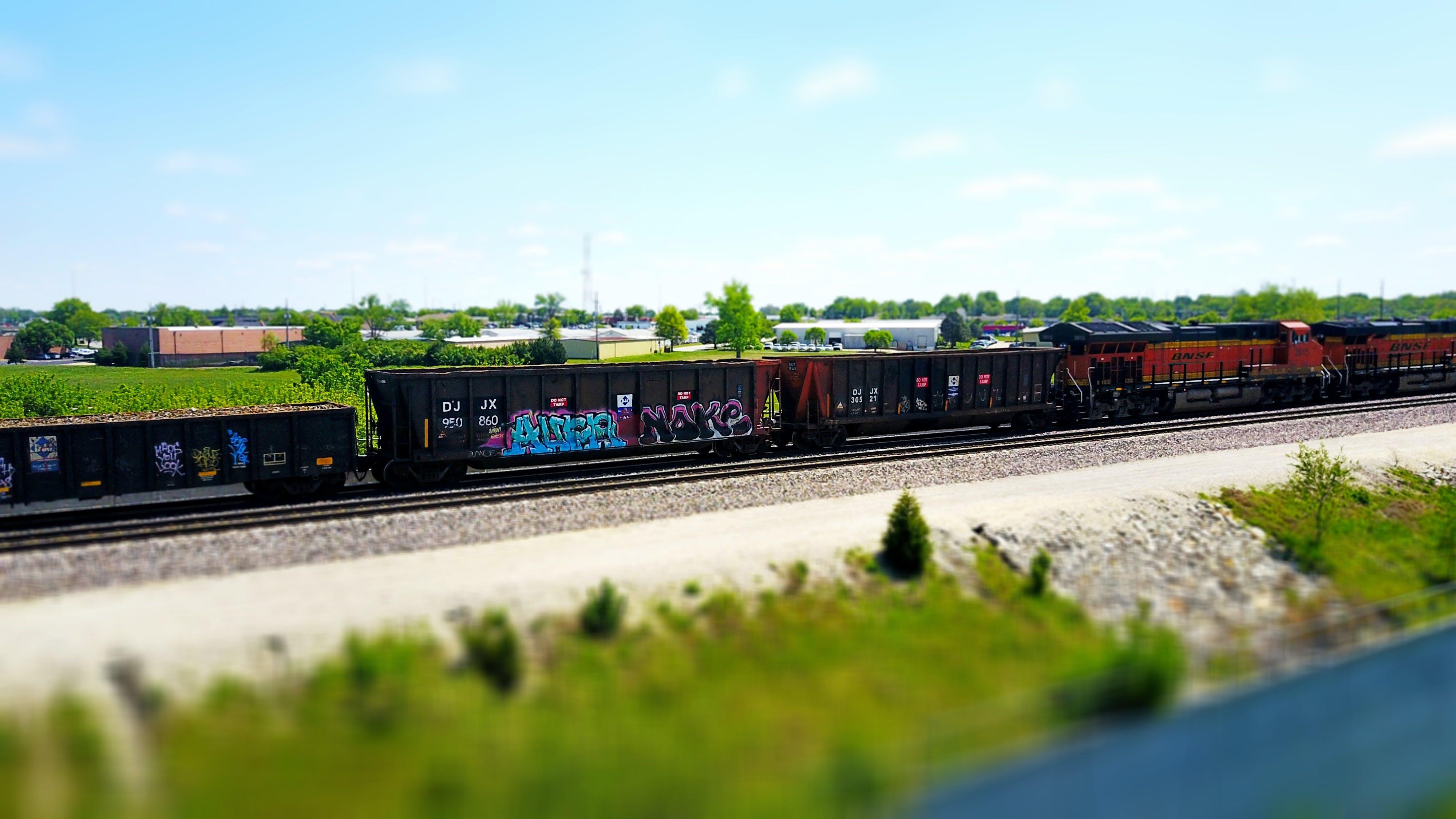 Free stock photo of graffiti, train