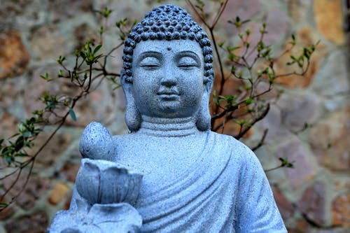 Free stock photo of bouddha, printemps, statue