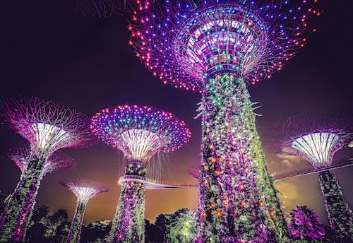 Gratis stockfoto met architectueel design, architectueel ontwerp, avond, Azië