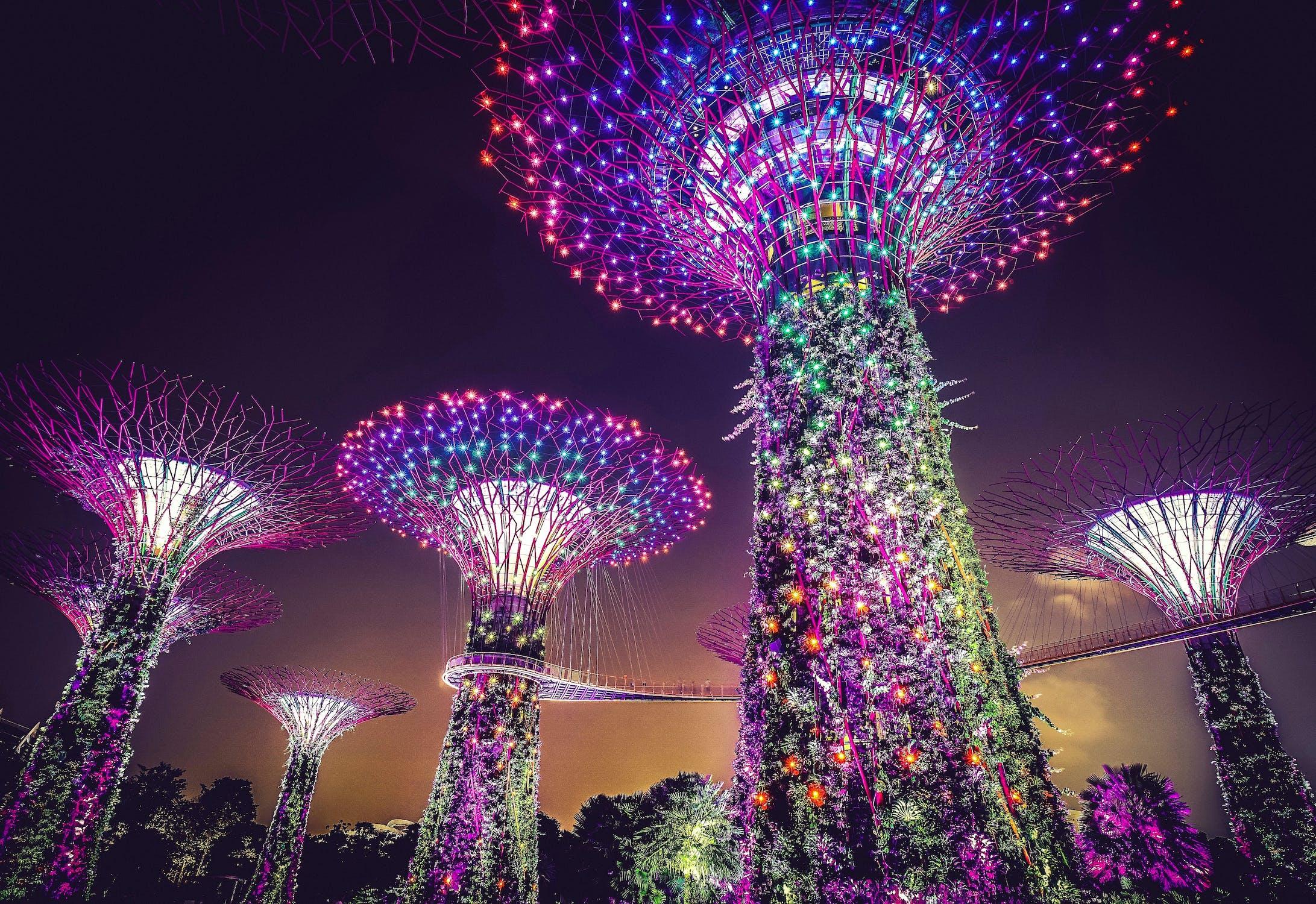 illuminated singapore super trees