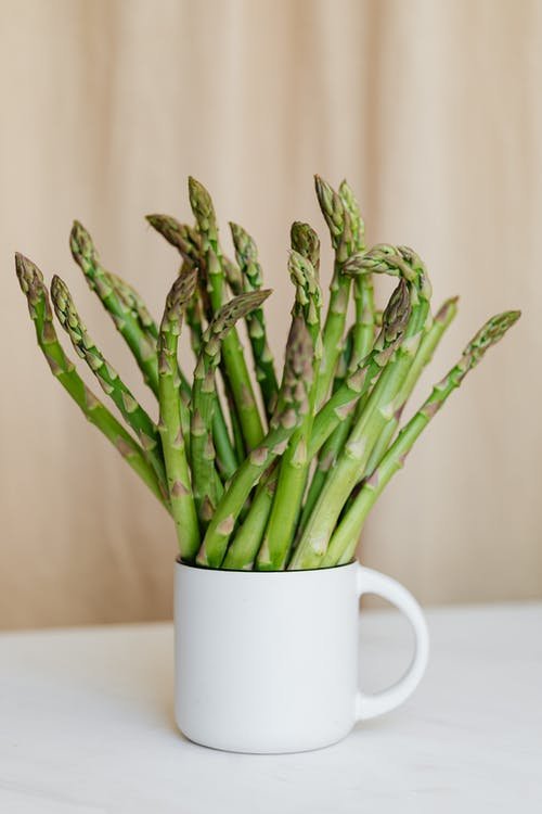 Composition of ceramic cup with ripe green stems of asparagus placed on white table