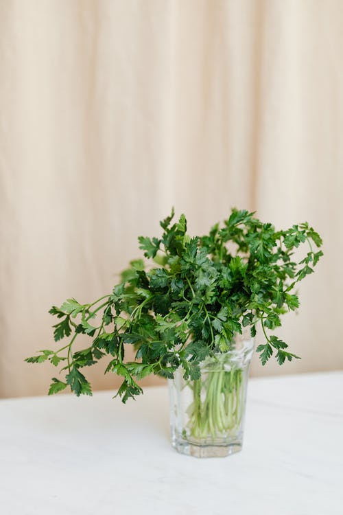 Glass with bunch of parsley on table