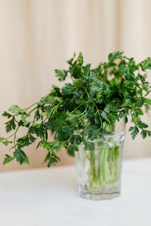Glass with bunch of green parsley on table