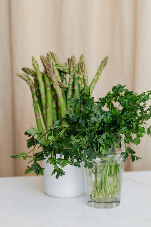 Green herbs in vases on table