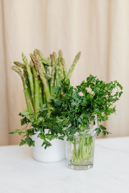 Composition of fresh green parsley in clear glass vase placed before decorative ceramic mug with natural green stems asparagus on white table