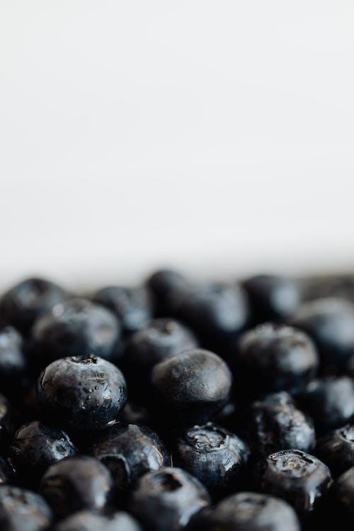 Základová fotografie zdarma na téma antioxidant, bílé pozadí, borůvka, černá