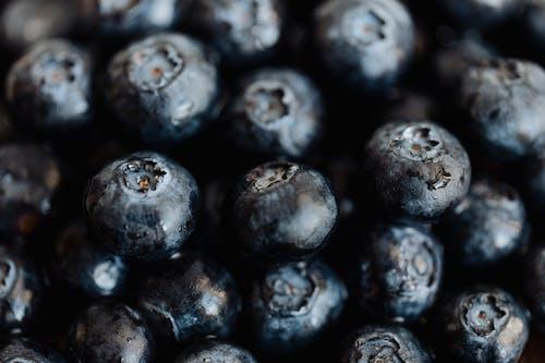 Raw black organic blueberries in bunch