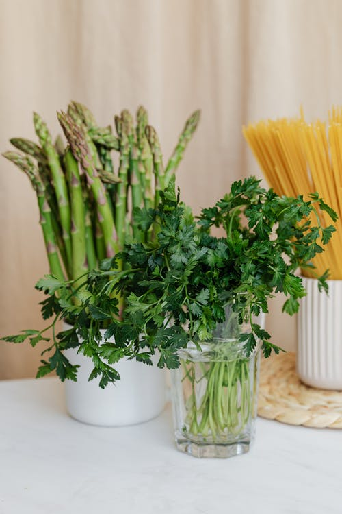 Fresh green plants and spaghetti in vases on table