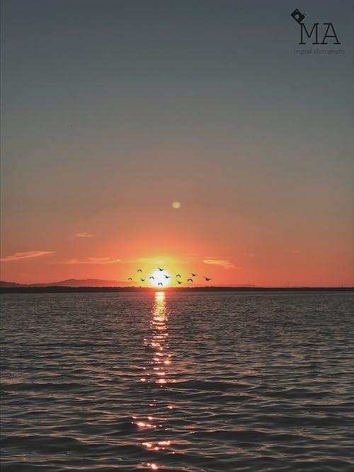 Kostnadsfri bild av natur, solnedgång, vatten