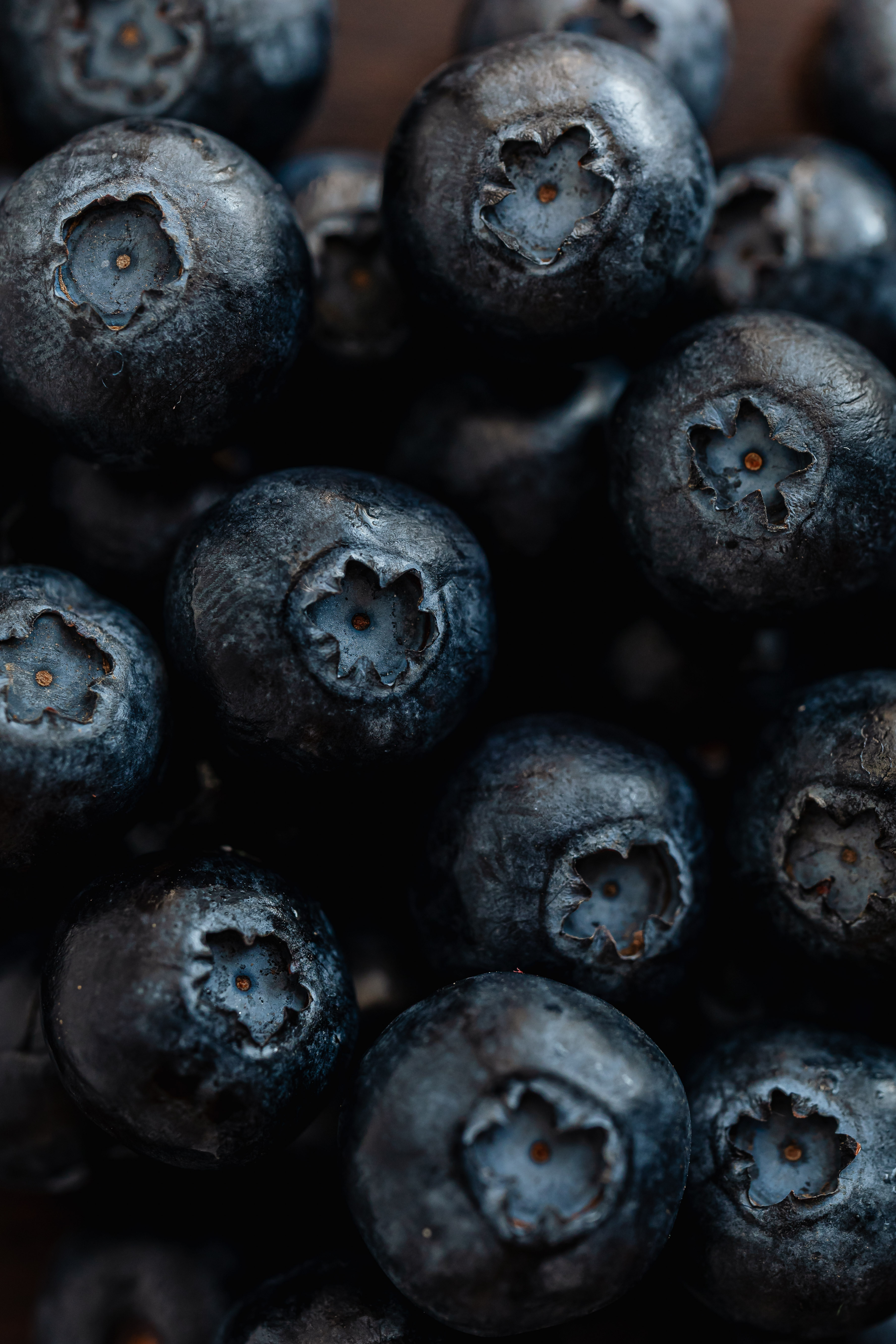 pile of delicious fresh ripe blueberries