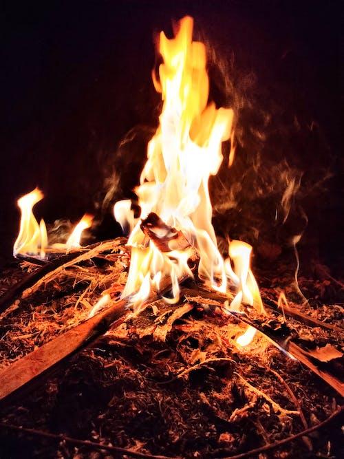 Ingyenes stockfotó a természet égő, diy fa égetés, égő, égő fa témában