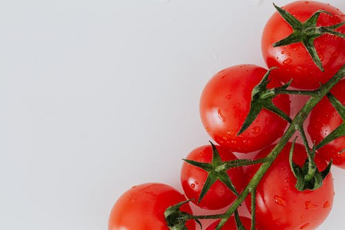 Ripe red tomatoes on white surface