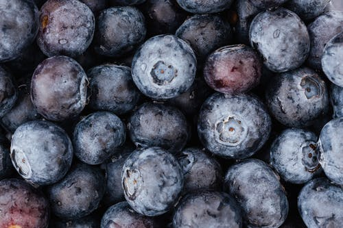 Set of dry ripe blueberries